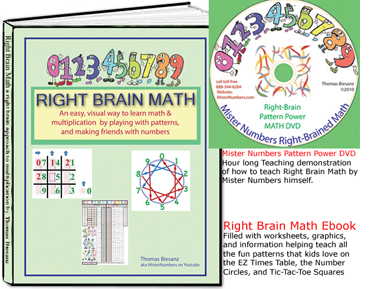 Right Brain Math Book and DVD and worksheets
